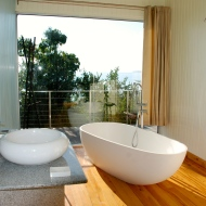 Bathrooms with views