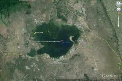 Google Map of Lake Naivasha