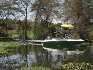 "The speedboat ""Fish Eagle"""